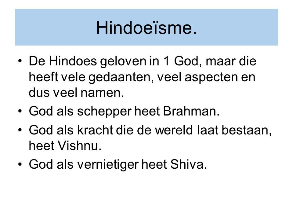 Hindoeïsme. De Hindoes geloven in 1 God, maar die heeft vele gedaanten, veel aspecten en dus veel namen. God als schepper heet Brahman. God als kracht