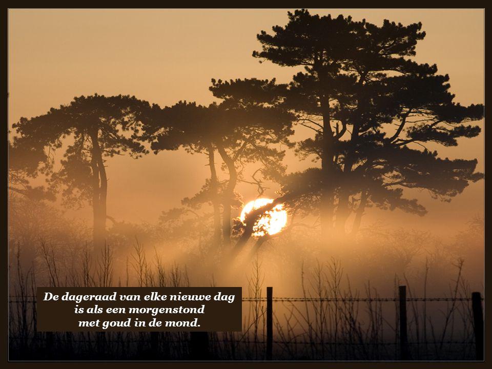 Genegenheid is een weg die steeds begaanbaar is.
