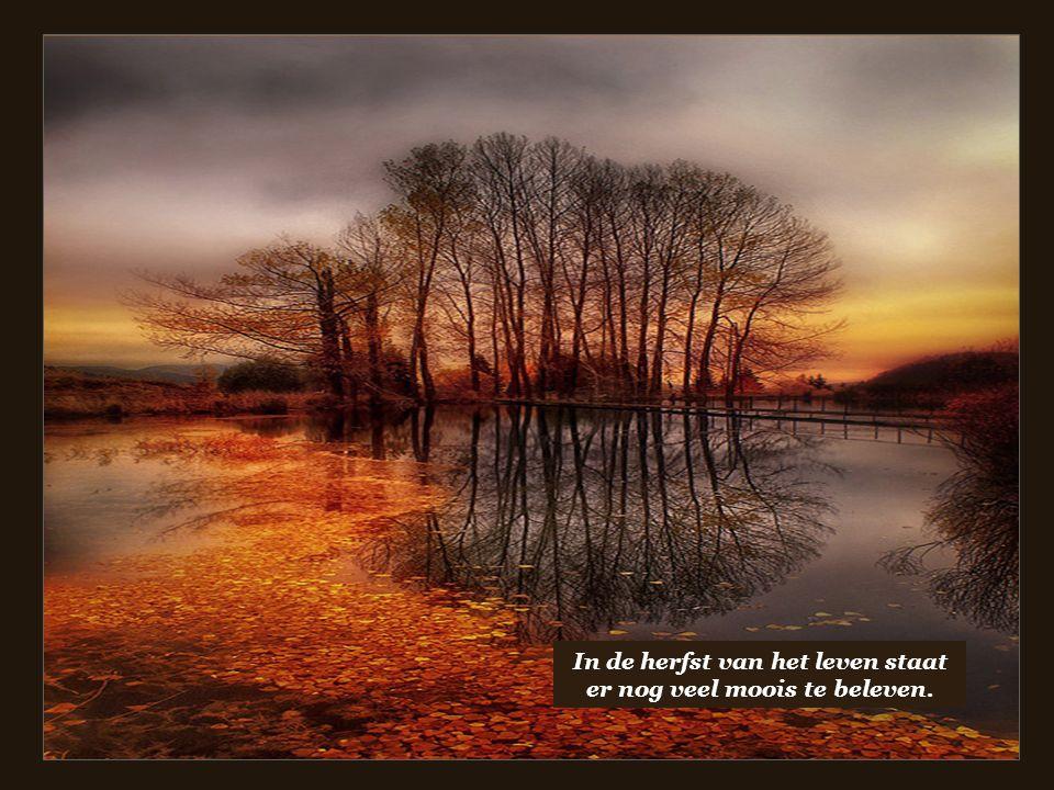 In de herfst van het leven staat er nog veel moois te beleven.