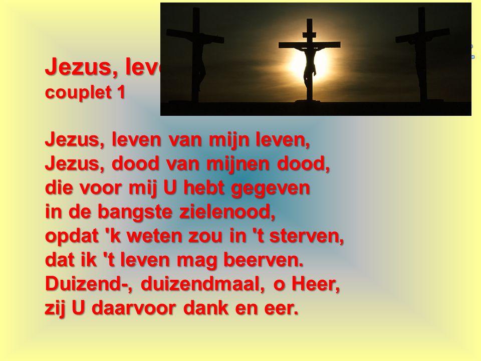 Jezus, leven van mijn leven, couplet 1 Jezus, leven van mijn leven, Jezus, dood van mijnen dood, die voor mij U hebt gegeven in de bangste zielenood,