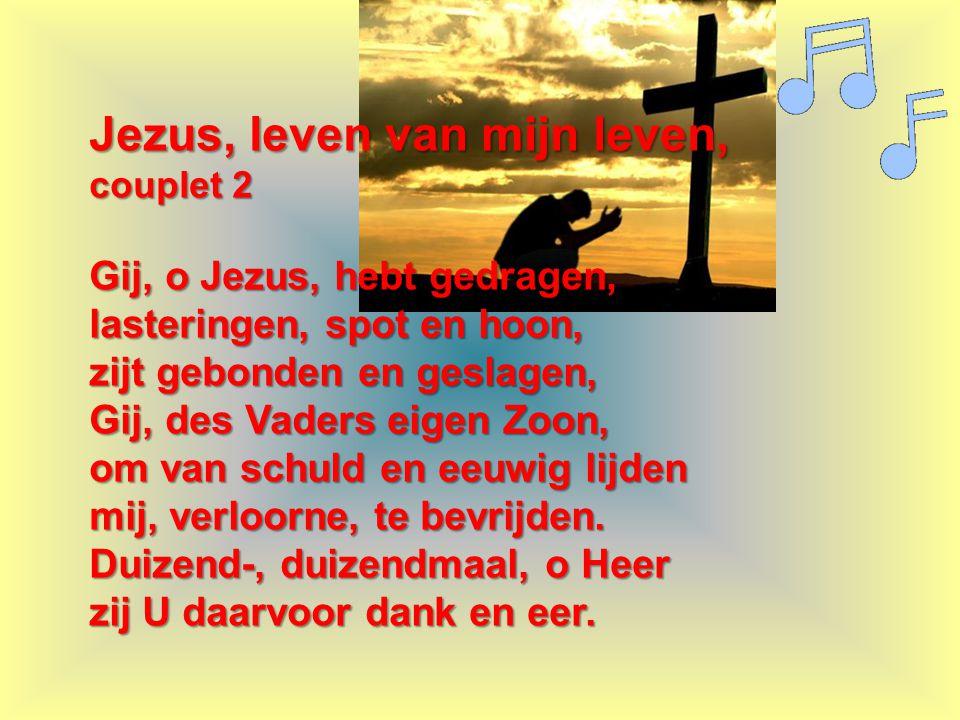 Jezus, leven van mijn leven, couplet 2 Gij, o Jezus, hebt gedragen, lasteringen, spot en hoon, zijt gebonden en geslagen, Gij, des Vaders eigen Zoon,