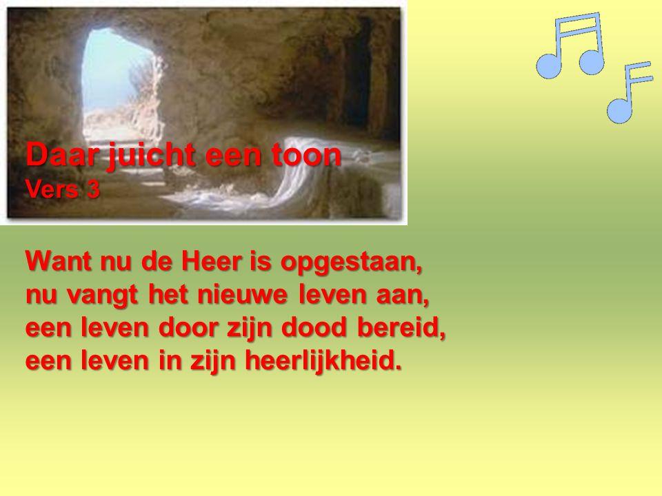 Daar juicht een toon Vers 3 Want nu de Heer is opgestaan, nu vangt het nieuwe leven aan, een leven door zijn dood bereid, een leven in zijn heerlijkhe