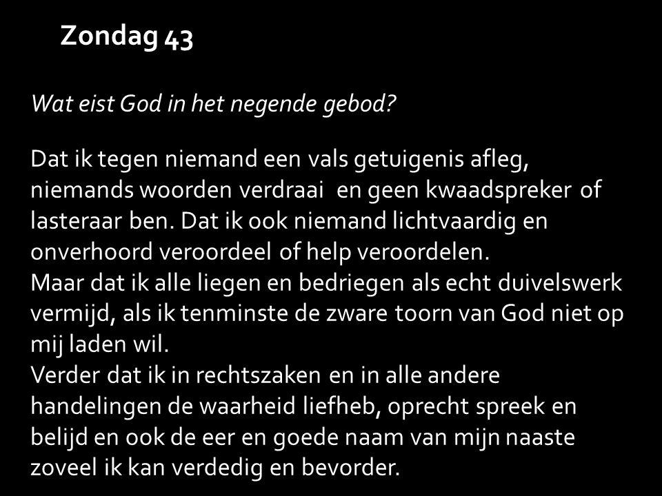 Zondag 43 Wat eist God in het negende gebod.