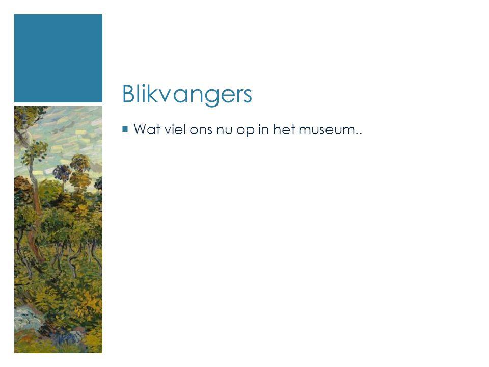Blikvangers  Wat viel ons nu op in het museum..