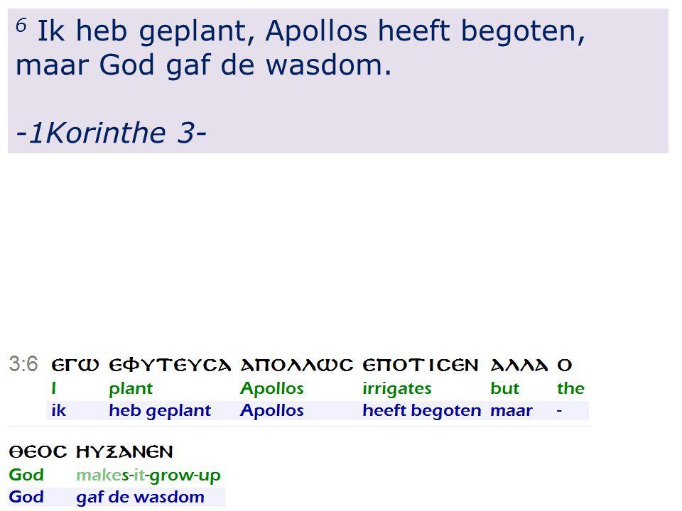 6 Ik heb geplant, Apollos heeft begoten, maar God gaf de wasdom. -1Korinthe 3-
