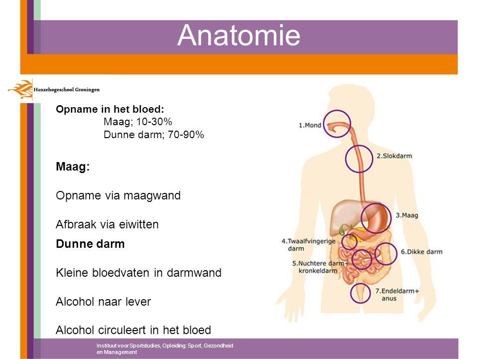 Anatomie Instituut voor Sportstudies, Opleiding: Sport, Gezondheid en Management Opname in het bloed: Maag; 10-30% Dunne darm; 70-90% Maag: Opname via