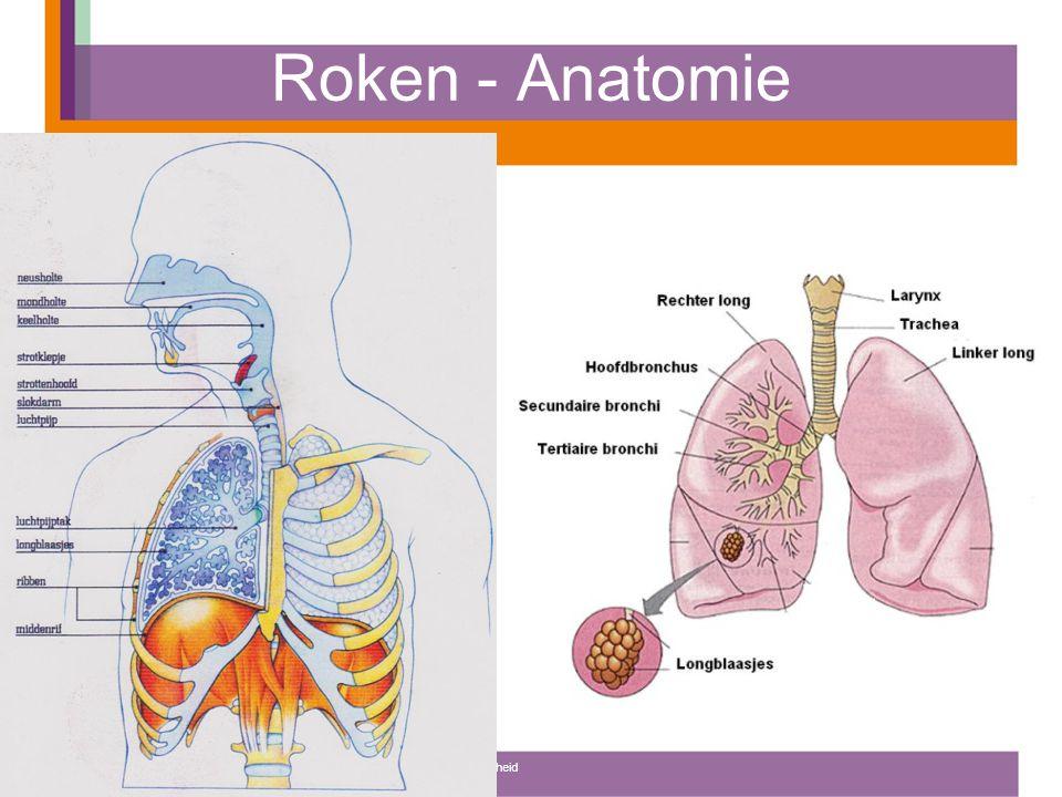 Roken - Gaswisseling Hoe komt de lucht in de longen.