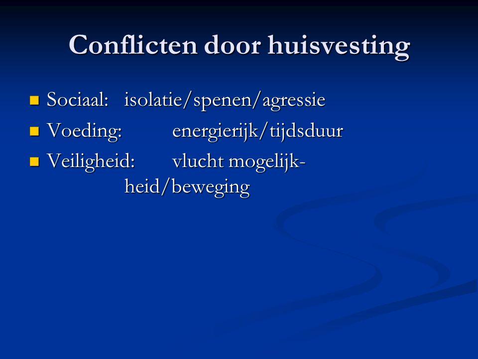 Conflicten door huisvesting Sociaal: isolatie/spenen/agressie Sociaal: isolatie/spenen/agressie Voeding: energierijk/tijdsduur Voeding: energierijk/ti