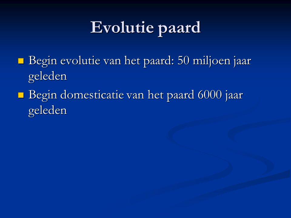 Evolutie paard Begin evolutie van het paard: 50 miljoen jaar geleden Begin evolutie van het paard: 50 miljoen jaar geleden Begin domesticatie van het