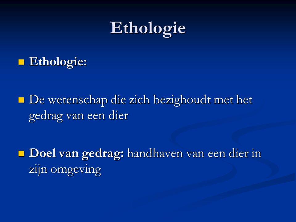 Ethologie Ethologie: Ethologie: De wetenschap die zich bezighoudt met het gedrag van een dier De wetenschap die zich bezighoudt met het gedrag van een