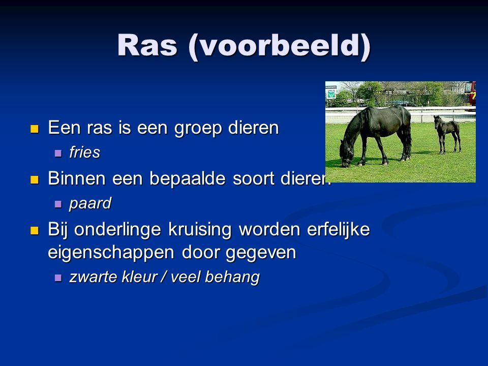 Ras (voorbeeld) Een ras is een groep dieren Een ras is een groep dieren fries fries Binnen een bepaalde soort dieren Binnen een bepaalde soort dieren