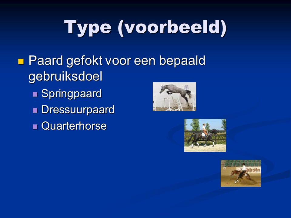 Type (voorbeeld) Paard gefokt voor een bepaald gebruiksdoel Paard gefokt voor een bepaald gebruiksdoel Springpaard Springpaard Dressuurpaard Dressuurp