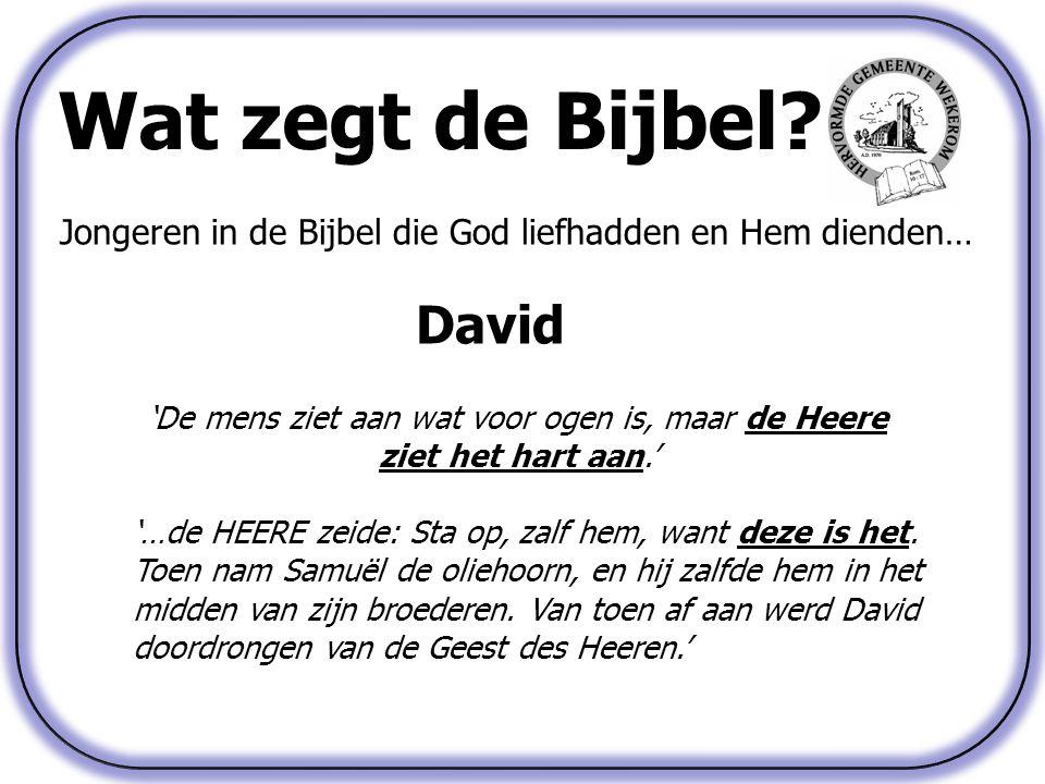 Wat zegt de Bijbel? Jongeren in de Bijbel die God liefhadden en Hem dienden… David 'De mens ziet aan wat voor ogen is, maar de Heere ziet het hart aan