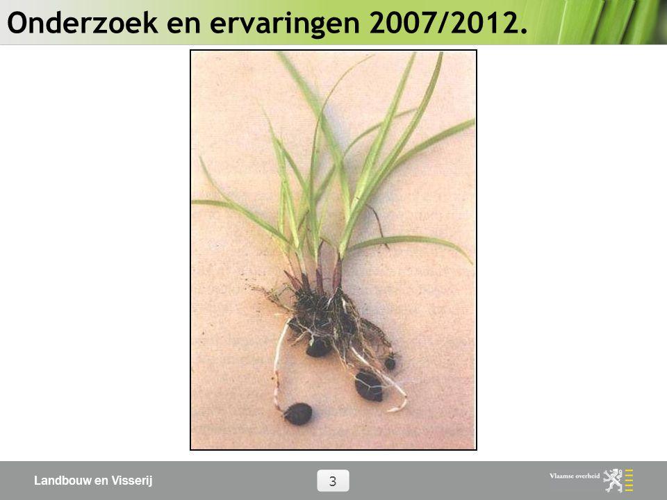Landbouw en Visserij 4 Bestrijding knolcyperus: Algemeen 53 gewasbeschermingsmiddelen getest 27 chemische proefpercelen: vz,vo,no 2 mechanische 1 afdekking 3 gewassen 1.500 planten/m²----------- enkele planten