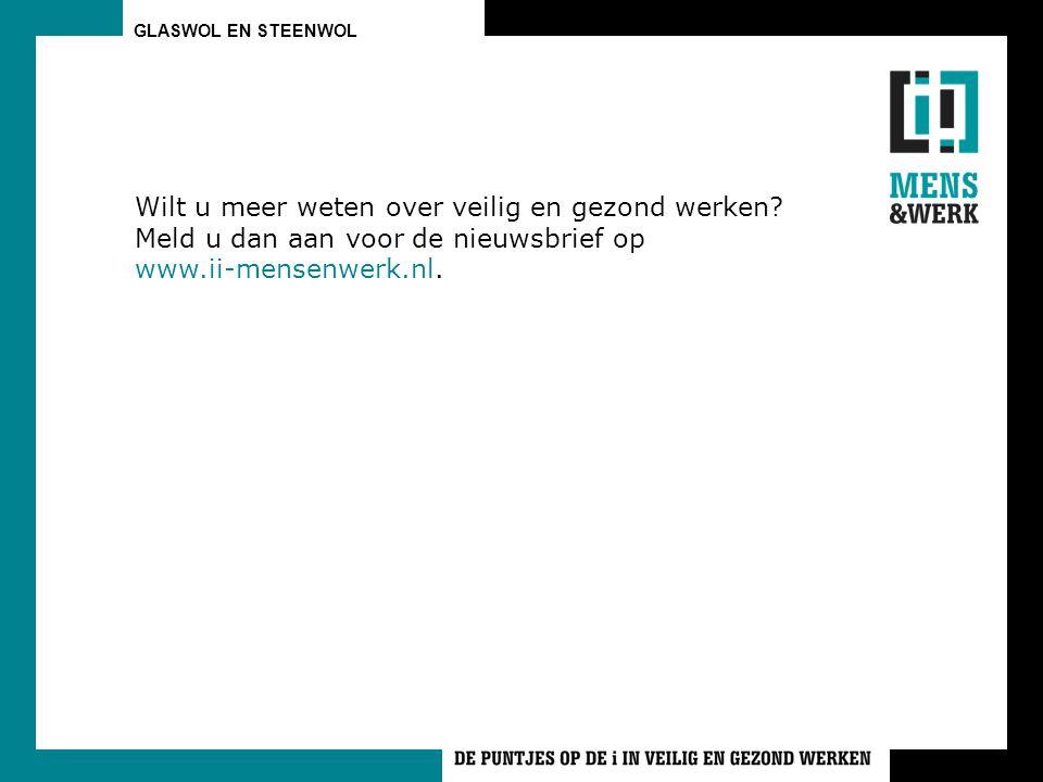 Wilt u meer weten over veilig en gezond werken? Meld u dan aan voor de nieuwsbrief op www.ii-mensenwerk.nl.