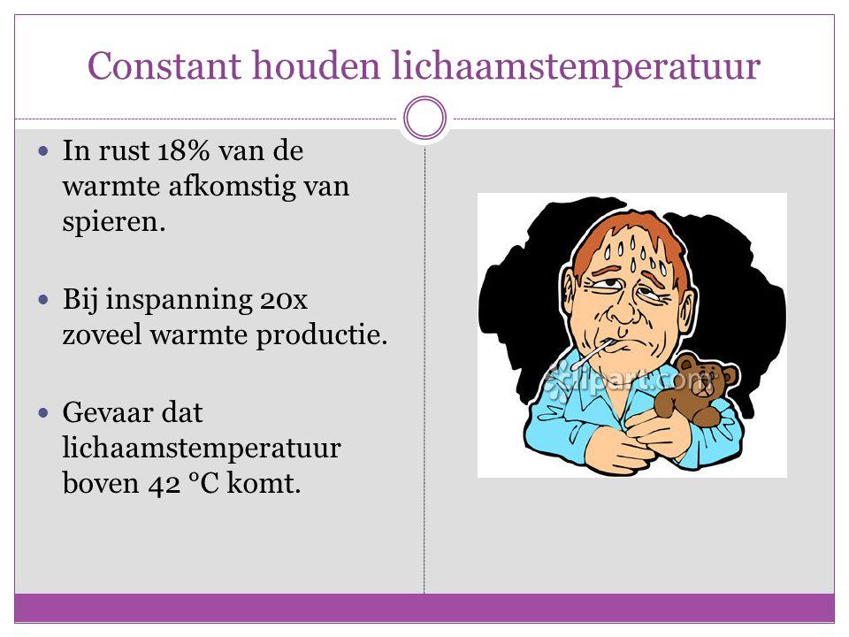 Constant houden lichaamstemperatuur In rust 18% van de warmte afkomstig van spieren. Bij inspanning 20x zoveel warmte productie. Gevaar dat lichaamste
