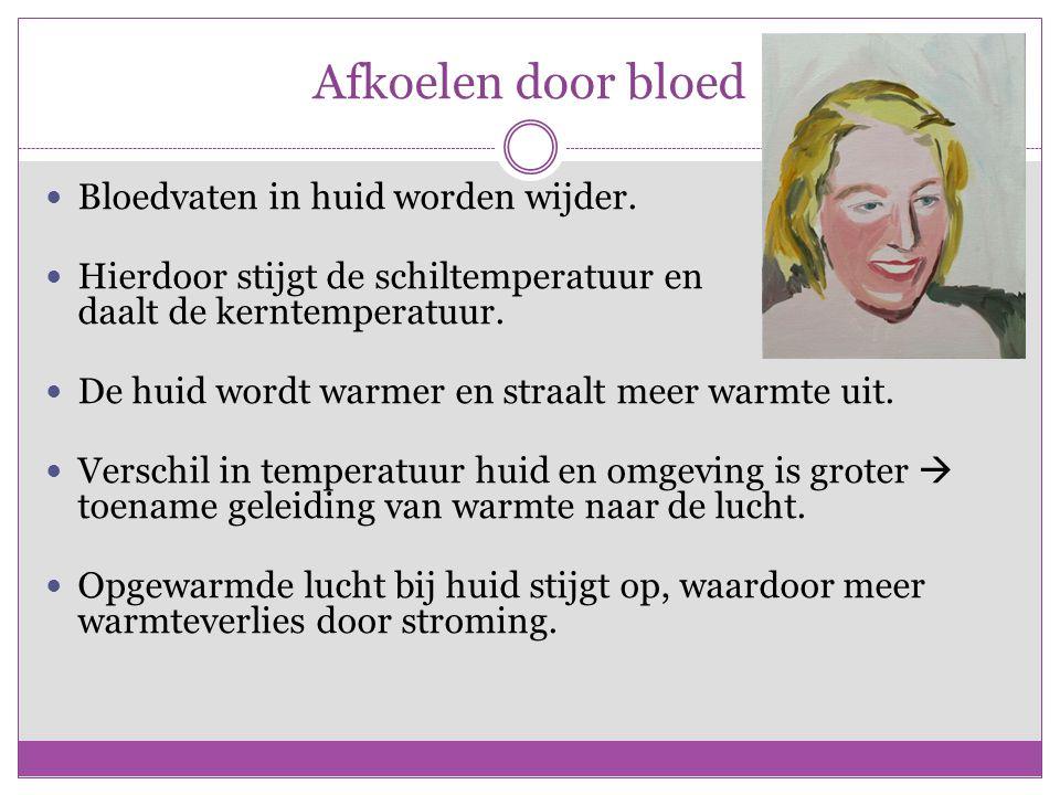 Afkoelen door bloed Bloedvaten in huid worden wijder. Hierdoor stijgt de schiltemperatuur en daalt de kerntemperatuur. De huid wordt warmer en straalt