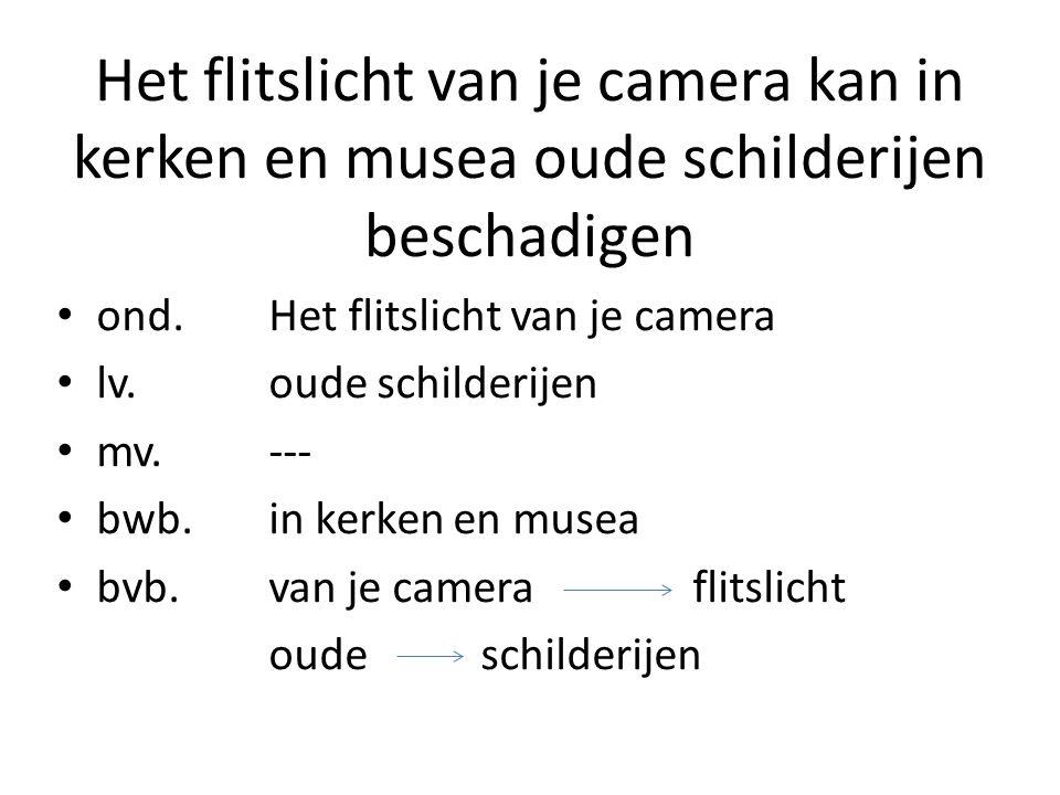 Het flitslicht van je camera kan in kerken en musea oude schilderijen beschadigen ond.Het flitslicht van je camera lv.oude schilderijen mv.--- bwb.in