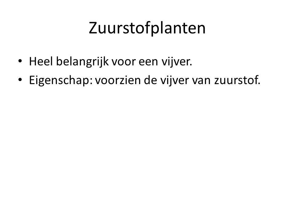Zuurstofplanten Heel belangrijk voor een vijver. Eigenschap: voorzien de vijver van zuurstof.