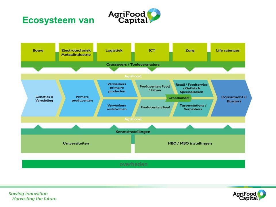 Ecosysteem van overheden