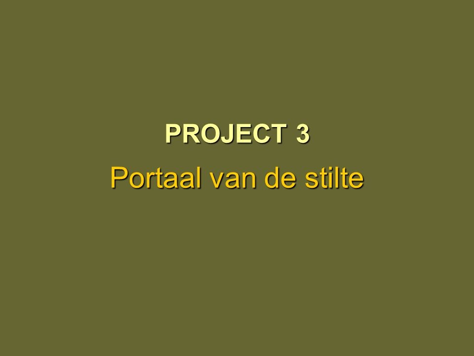 PROJECT 3 Portaal van de stilte