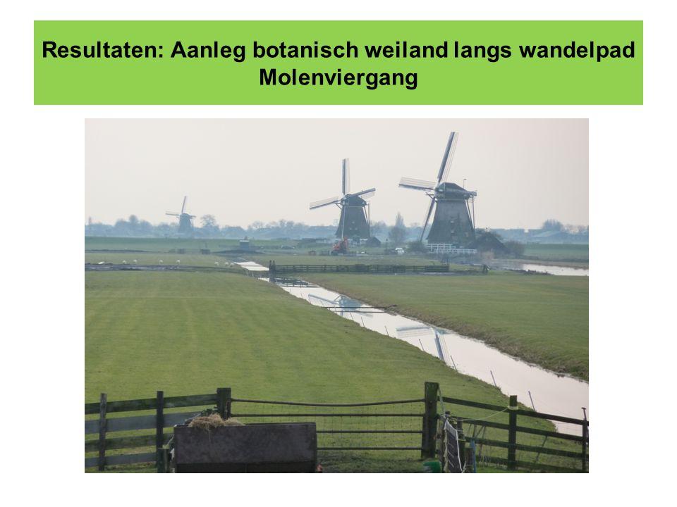 Resultaten: Aanleg botanisch weiland langs wandelpad Molenviergang