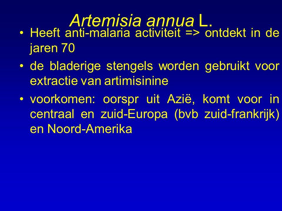 Artemisia annua L. Heeft anti-malaria activiteit => ontdekt in de jaren 70 de bladerige stengels worden gebruikt voor extractie van artimisinine voork