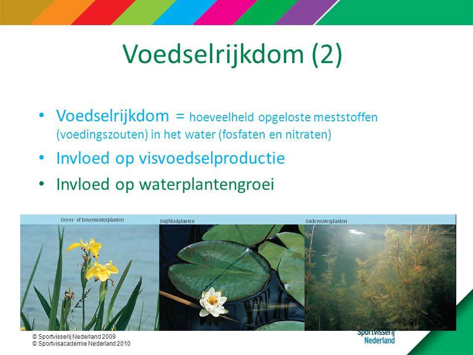 © Sportvisserij Nederland 2009 © Sportvisacademie Nederland 2010 Voedselrijkdom (2) Voedselrijkdom = hoeveelheid opgeloste meststoffen (voedingszouten) in het water (fosfaten en nitraten) Invloed op visvoedselproductie Invloed op waterplantengroei