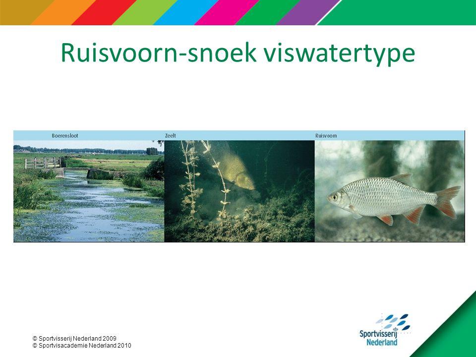 © Sportvisserij Nederland 2009 © Sportvisacademie Nederland 2010 Ruisvoorn-snoek viswatertype