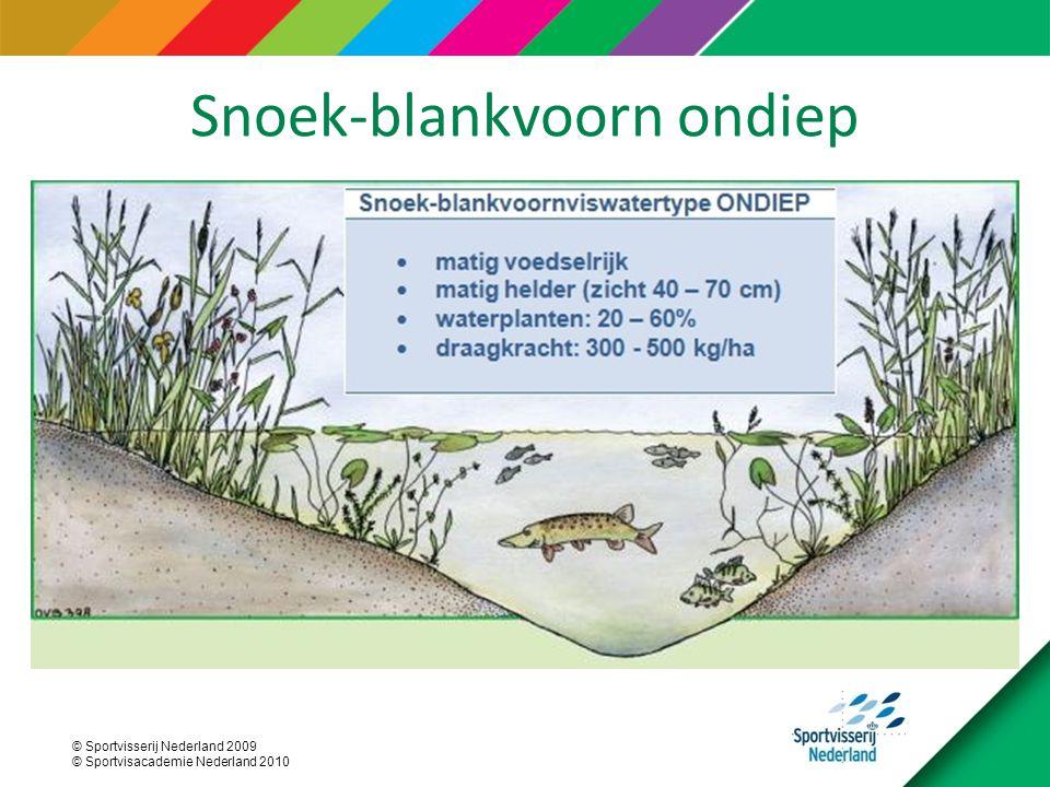 © Sportvisserij Nederland 2009 © Sportvisacademie Nederland 2010 Snoek-blankvoorn ondiep