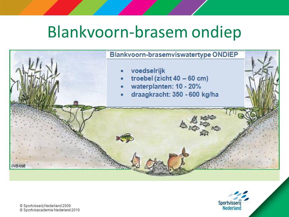 © Sportvisserij Nederland 2009 © Sportvisacademie Nederland 2010 Blankvoorn-brasem ondiep