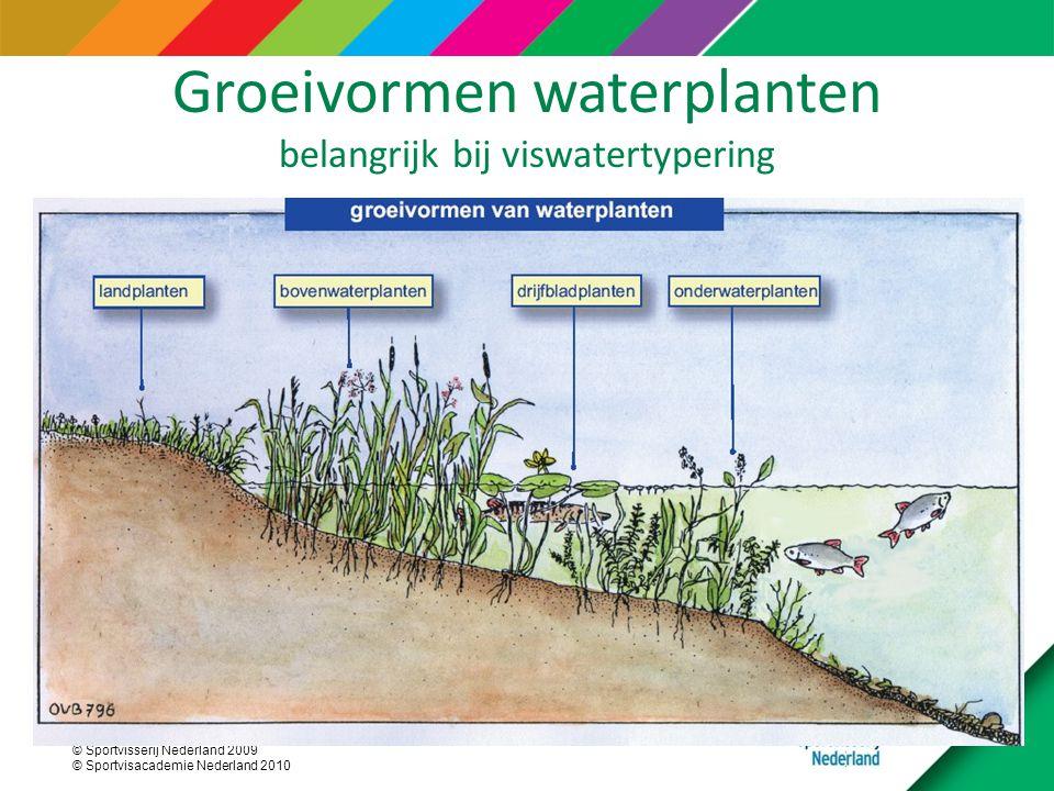 © Sportvisserij Nederland 2009 © Sportvisacademie Nederland 2010 Groeivormen waterplanten belangrijk bij viswatertypering