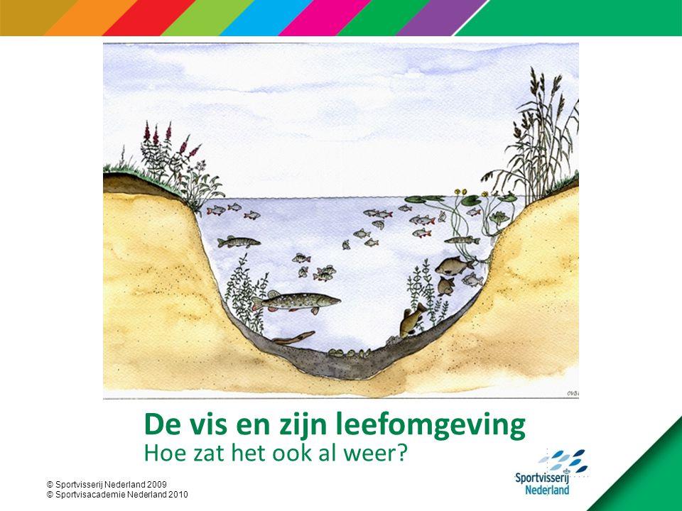 © Sportvisserij Nederland 2009 © Sportvisacademie Nederland 2010 De vis en zijn leefomgeving Hoe zat het ook al weer?