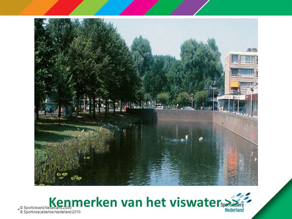© Sportvisserij Nederland 2009 © Sportvisacademie Nederland 2010 Beeld van de visstand