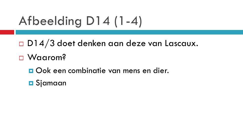 Afbeelding D14 (1-4)  D14/3 doet denken aan deze van Lascaux.  Waarom?  Ook een combinatie van mens en dier.  Sjamaan