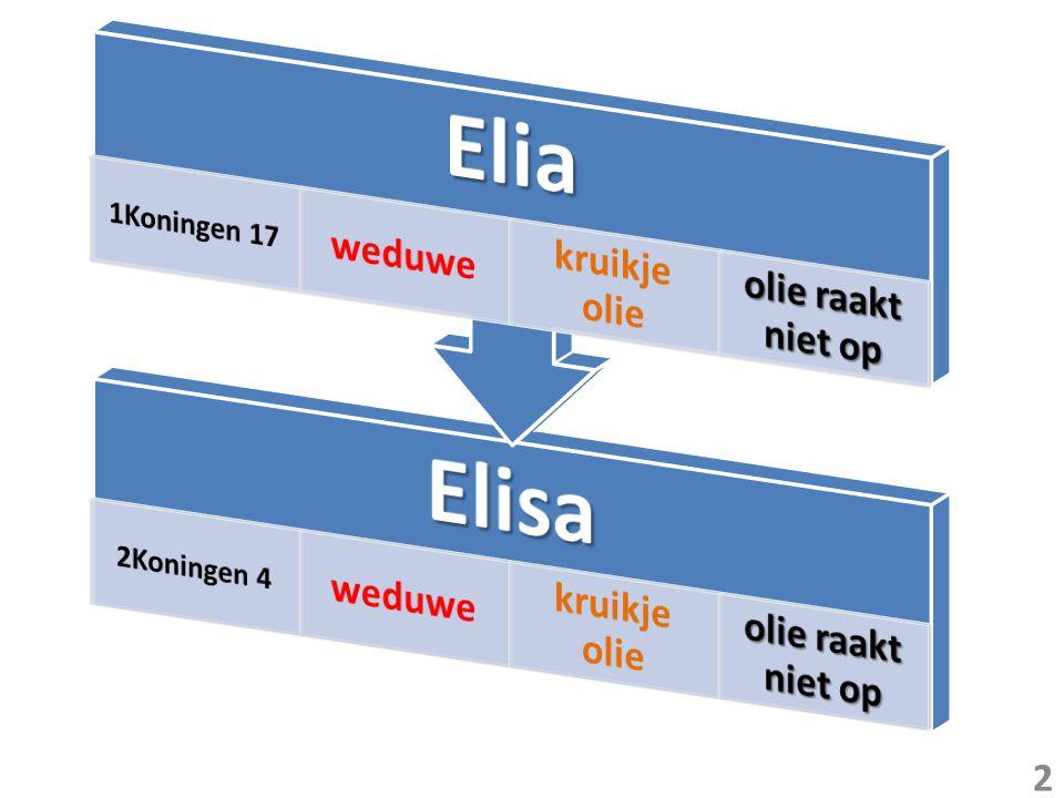 loopbaan eindigt bij doortocht Jordaan 8 wondertekenen opvolger Elia begint bij doortocht Jordaan Elisa ontvangt dubbel deel van Elia s geest* 2 x 8 = 16 wondertekenen * 2Koningen 2 9,10 3