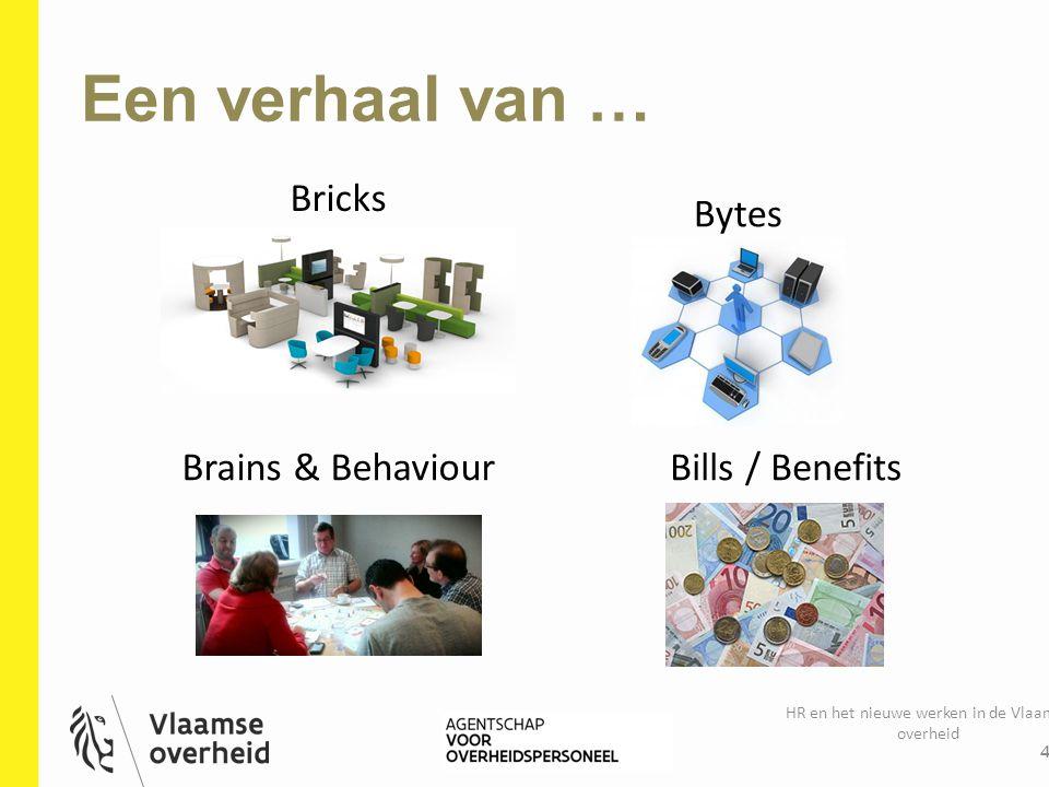 Een verhaal van … HR en het nieuwe werken in de Vlaamse overheid 4 Bricks Bytes Brains & BehaviourBills / Benefits