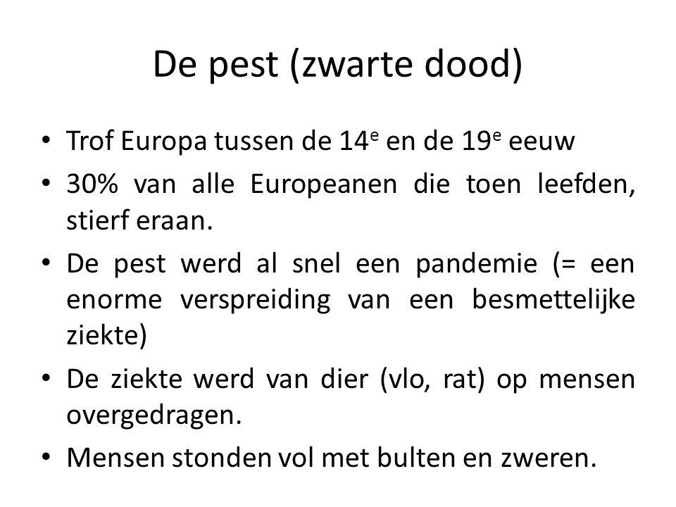 Trof Europa tussen de 14 e en de 19 e eeuw 30% van alle Europeanen die toen leefden, stierf eraan.