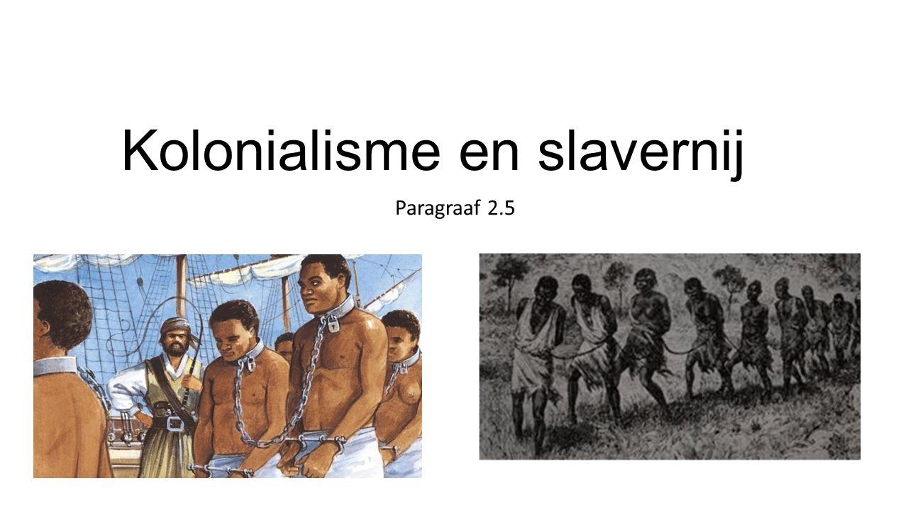 Kolonialisme en slavernij Paragraaf 2.5