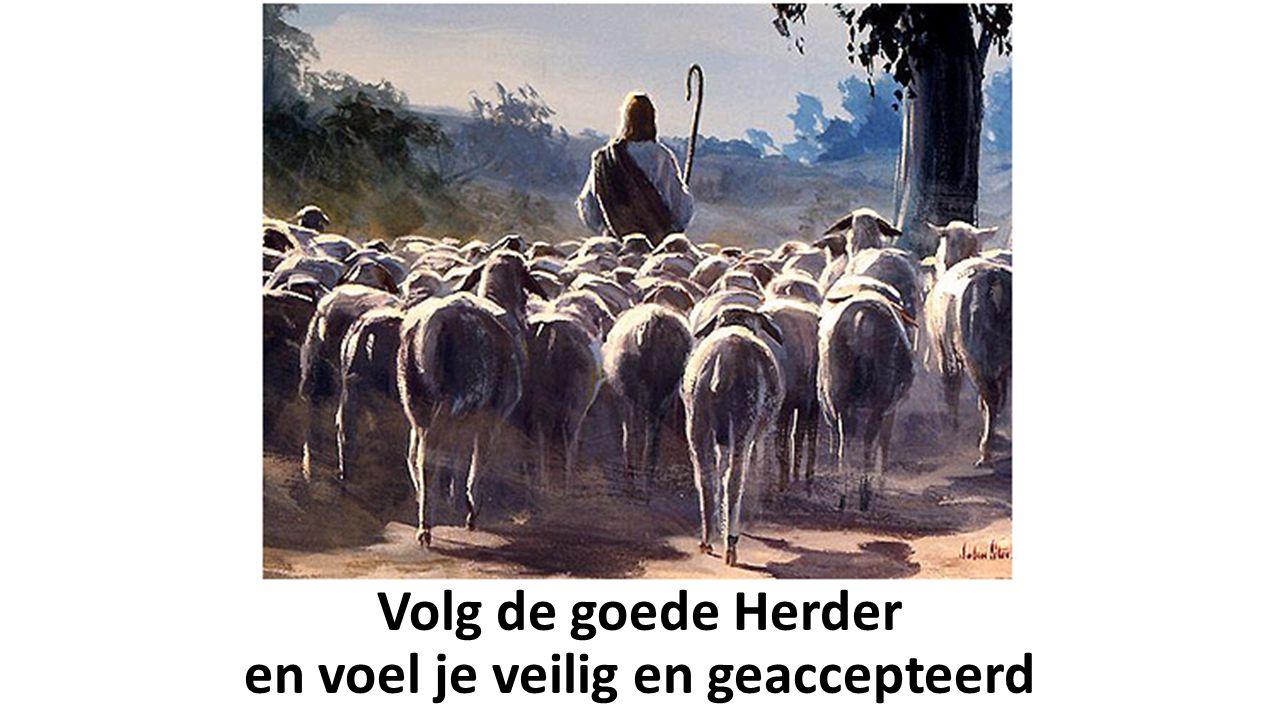 Volg de goede Herder en voel je veilig en geaccepteerd