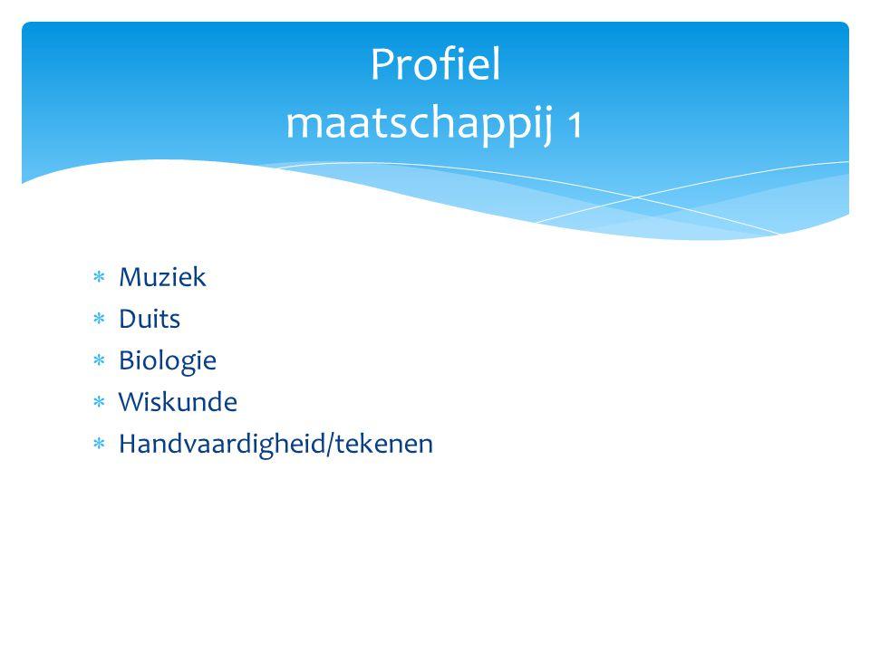  Muziek  Duits  Biologie  Wiskunde  Handvaardigheid/tekenen Profiel maatschappij 1