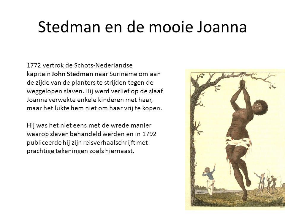 Stedman en de mooie Joanna 1772 vertrok de Schots-Nederlandse kapitein John Stedman naar Suriname om aan de zijde van de planters te strijden tegen de weggelopen slaven.