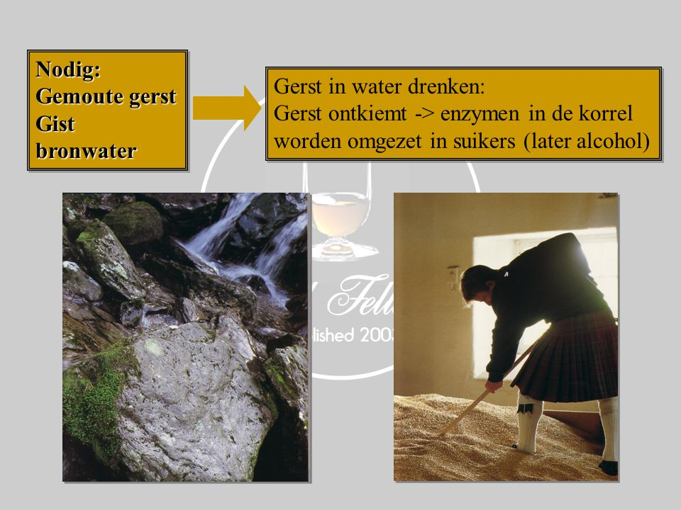 Nodig: Gemoute gerst GistbronwaterNodig: Gistbronwater Gerst in water drenken: Gerst ontkiemt -> enzymen in de korrel worden omgezet in suikers (later alcohol) Gerst in water drenken: Gerst ontkiemt -> enzymen in de korrel worden omgezet in suikers (later alcohol)