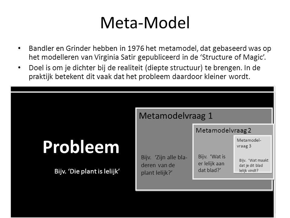 Meta-Model Bandler en Grinder hebben in 1976 het metamodel, dat gebaseerd was op het modelleren van Virginia Satir gepubliceerd in de 'Structure of Ma