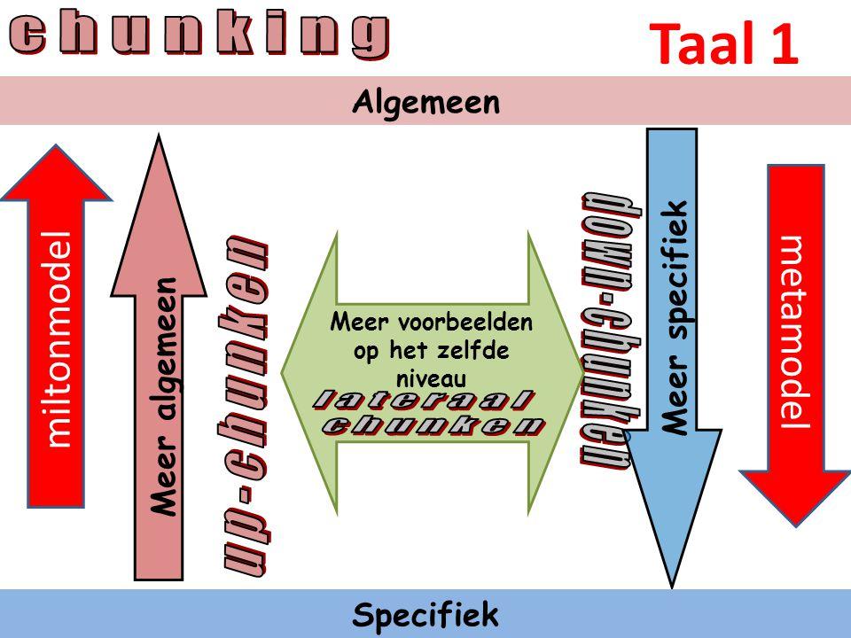 Chunken is van groot belang bij het voeren van een gesprek: Chunken Upchunken maakt rapport mogelijk op hoger neurologisch niveau Downchunken maakt mogelijk om heel concreet te zijn, zodat beiden precies weten wat de bedoeling is.
