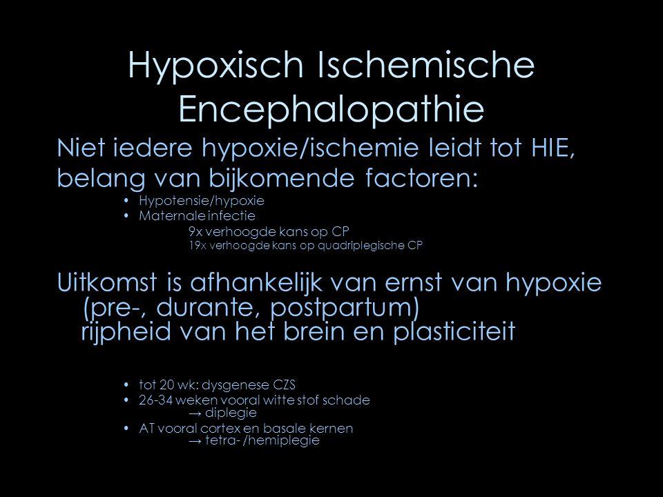 Hypoxisch Ischemische Encephalopathie Niet iedere hypoxie/ischemie leidt tot HIE, belang van bijkomende factoren: Hypotensie/hypoxie Maternale infecti