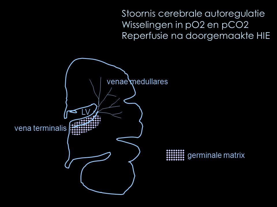 Stoornis cerebrale autoregulatie Wisselingen in pO2 en pCO2 Reperfusie na doorgemaakte HIE LV venae medullares vena terminalis germinale matrix