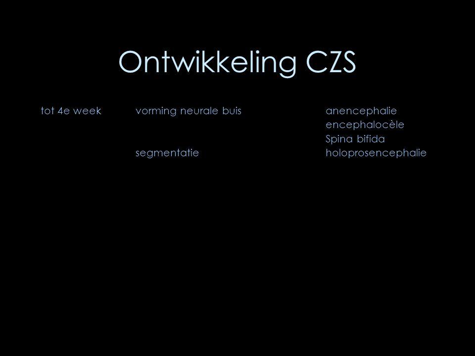 Ontwikkeling CZS tot 4e weekvorming neurale buis anencephalie encephalocèle Spina bifida segmentatieholoprosencephalie