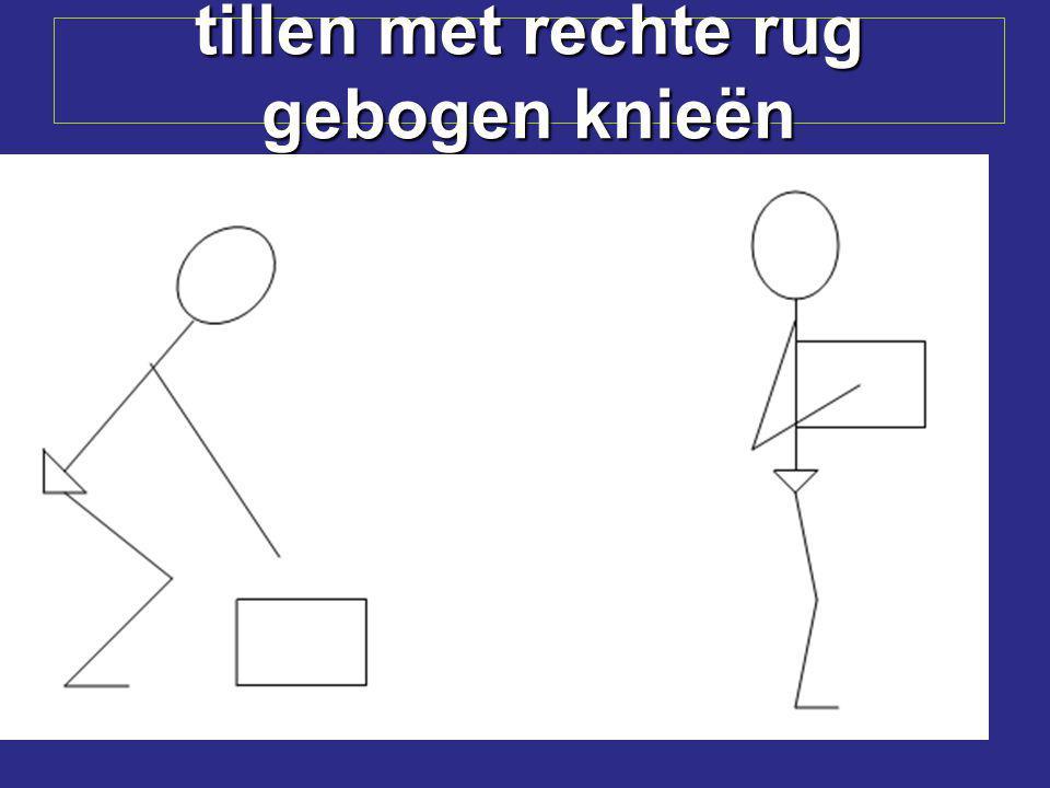 vorkheftruck Kanthout gebruiken (hoekbeschermers) Geen personen heffen zonder speciale werkbak
