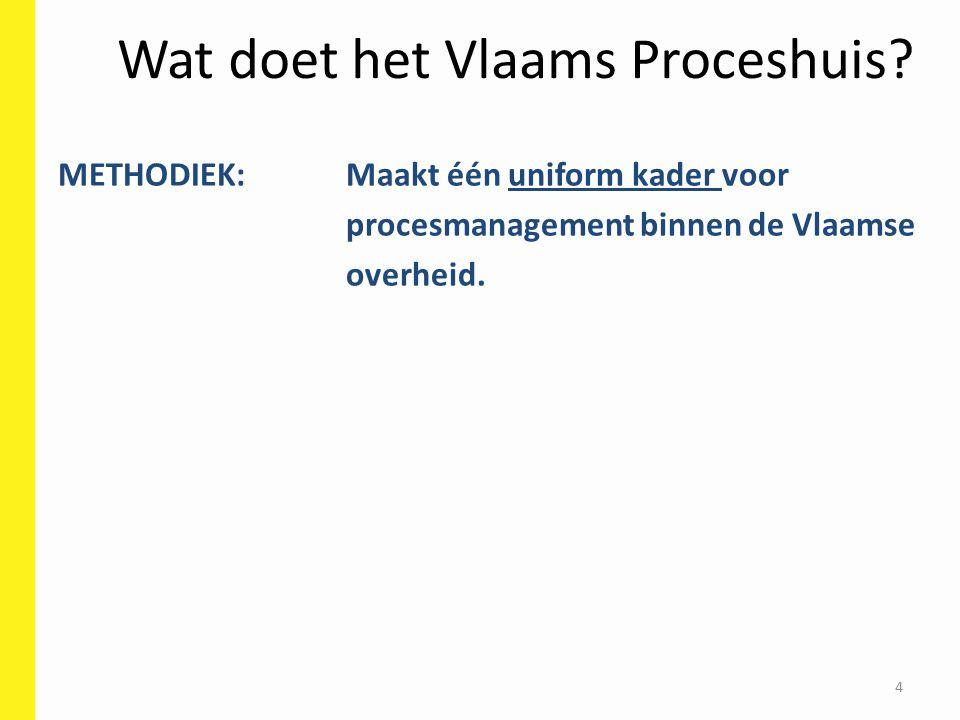 4 Wat doet het Vlaams Proceshuis.